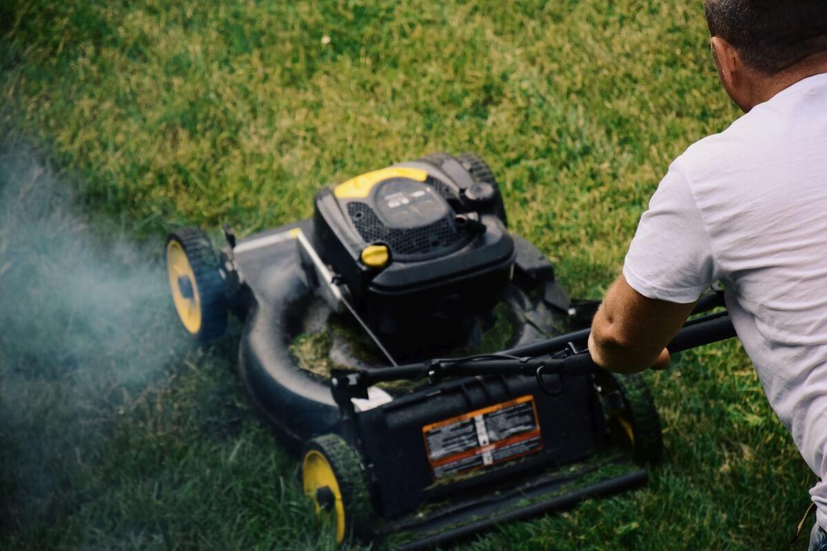 koszenie trawnikow lusi pomagier